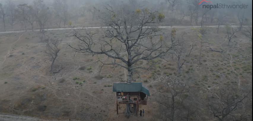 Tree House in Bardiya National Park